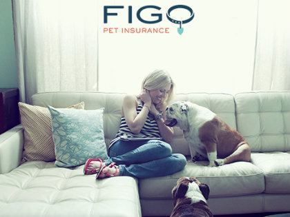figo pet insurance girl on couch with two dogs